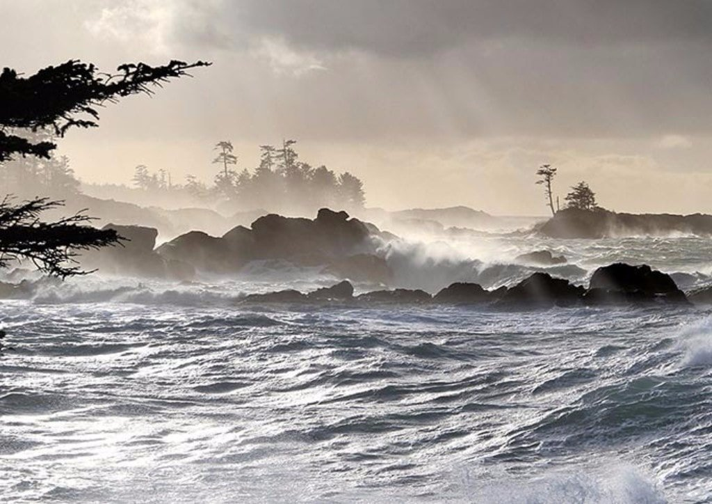 stormwatching in Ucluelet - Things to do