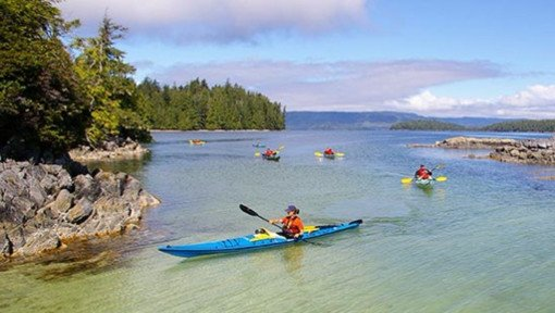 Things to do in Ucluelet - Kayaking